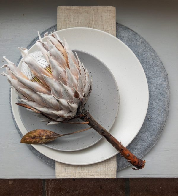 Protea on off white dinner plate