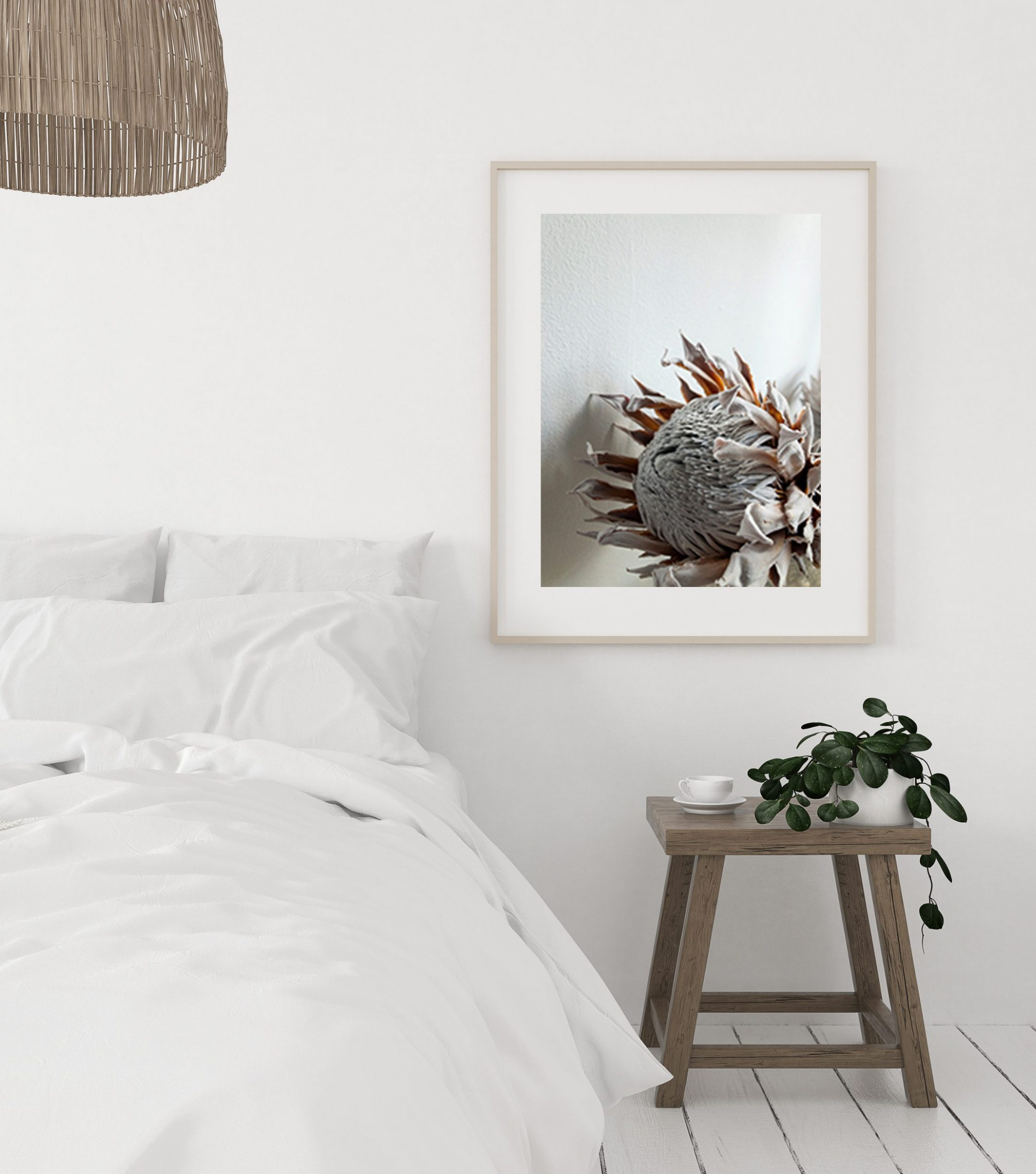 protea 2 calm in bedroom