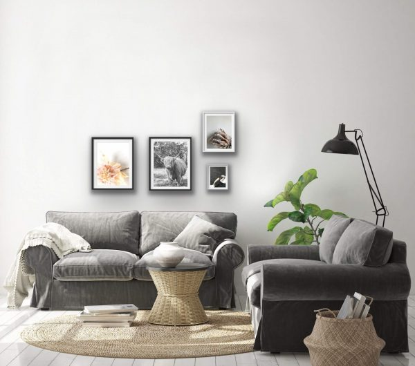 Gallery pictures above grey sofa