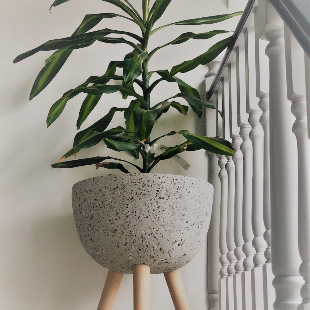 speckled grey planter